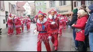 праздник дурачества Штутгарт. 19 января 2020 Narrentreffen BAD CANNSTATT