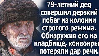 79-летний дед дерзко бежал из колонии строго режима. Обнаружив его на кладбище, конвоиры обомлели.