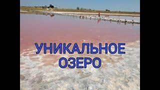 Розовое озеро. Удивительные места Украины.
