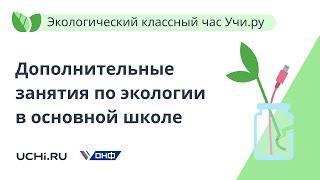 Экологический классный час Учи.ру как модель организации дополнительных занятий по экологии