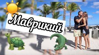 МАВРИКИЙ | черепахи | крокодилы | водопады