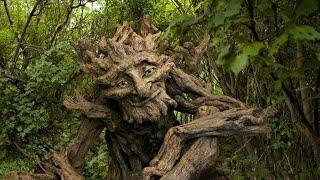 Причудливые скульптуры в лесу.