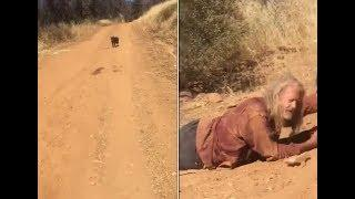 Водитель встретил собаку на дороге, она отказалась от еды и воды и не сдвинулась с места