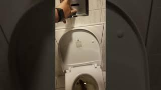 Toilets won't flush Norwegian Spirit 2019