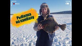 Рыбалка на камбалу //впервые на зимней рыбалке // речка Тумнин, Монгохто