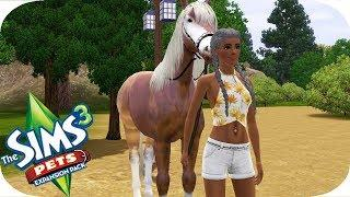 The Sims 3 | Pets | Part 11 | SELLING A HORSE?!?