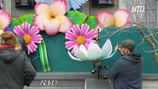 В Новом Орлеане вместо карнавальных платформ украсили дома