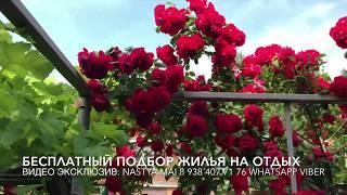 Геленджик отдых жилье Эконом вариант около моря Горького 32
