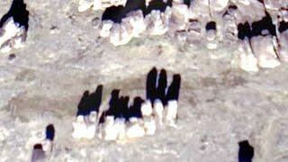 Доисторические отвалы Якутии