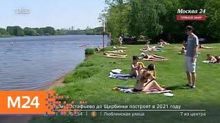 1 июня в Москве откроются зоны отдыха у воды - Москва 24