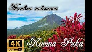 Релакс видео 4К: Коста-Рика #johnny kirillov