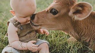 Удивительные Случаи Дружбы с Животными