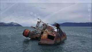 Более 1000 кораблей, которые отравляют океаны и моря