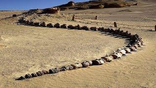 Мужчина не мог поверить своим глазам, когда нашел ЭТО в пустыне