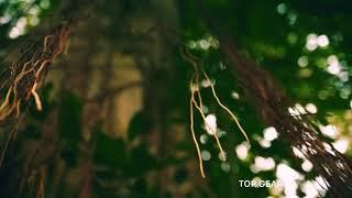 Гранд Тур из Камбоджа во Вьетнам 4 сезон 1 серия - Моряки - Grand Tour  (1 эпизод)