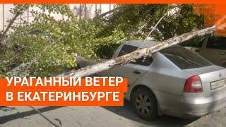 В Екатеринбурге бушует сильный ветер
